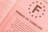 Le salarié licencié à la suite de la suspension de son permis de conduire ne peut prétendre au versement de l'indemnité compensatrice de préavis.